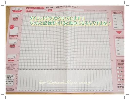 ダイエットプーアール茶グラフ.JPG